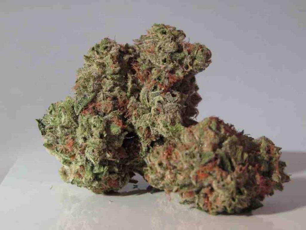 Quelle fleur de CBD fumer ?