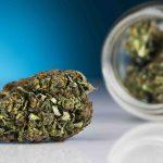 Cbd fleurs cannabis a fumer