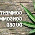 Comment fumer de la fleur de CBD ?