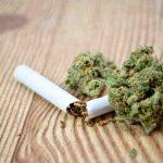 Quel est le meilleur CBD à fumer ?